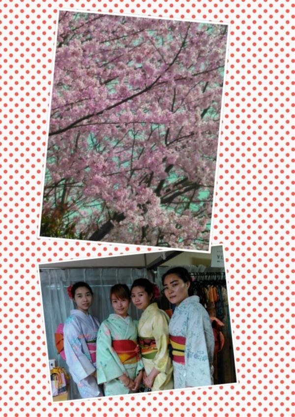 レンタル着物で女子会、中国からのお客様!サムネイル